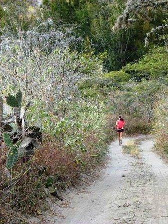 Hosteria Hacienda San Francisco: Trote, caminatas y bicicleta