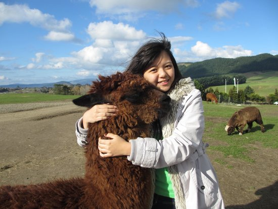 Agrodome: with lama