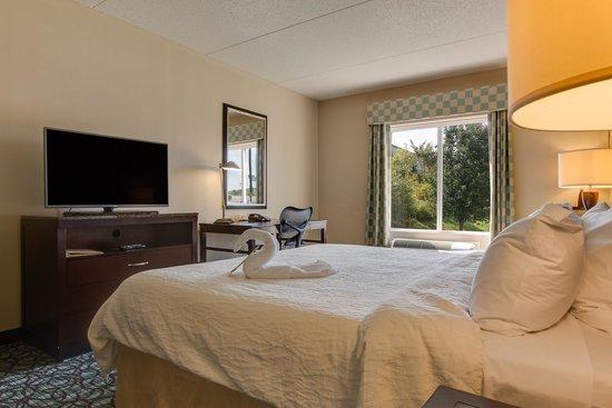 Hilton Garden Inn Nashville/Smyrna: Guest Room