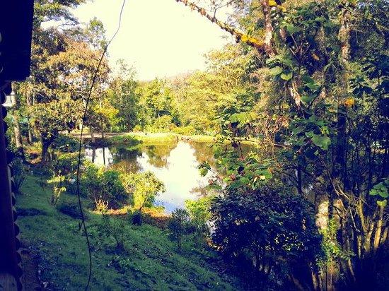 Sueños del Bosque: Lago del Lodge