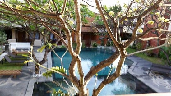 Fourteen Roses Hotel: Serene pool