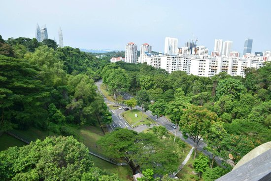 The Southern Ridges: Henderson Road view from the wooden bridge