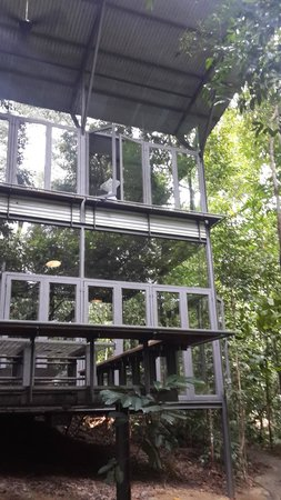 Sekeping Serendah Retreat: Outside look of Glass Shed 1
