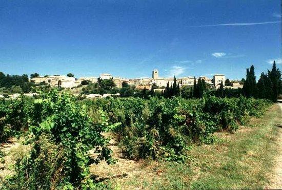 Taste du Languedoc