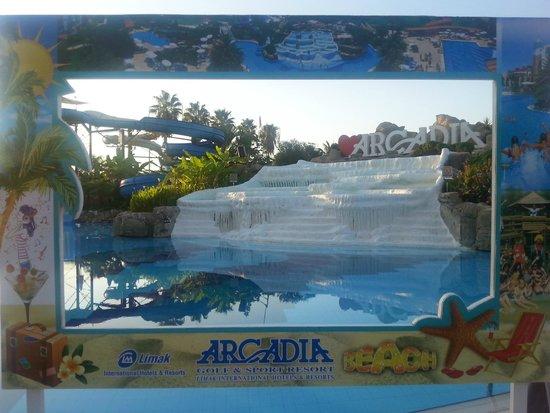 Limak Arcadia Golf & Sport Resort: Бассейн