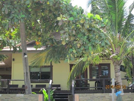 Villa Tanamera: ビーチから見たヴィラ