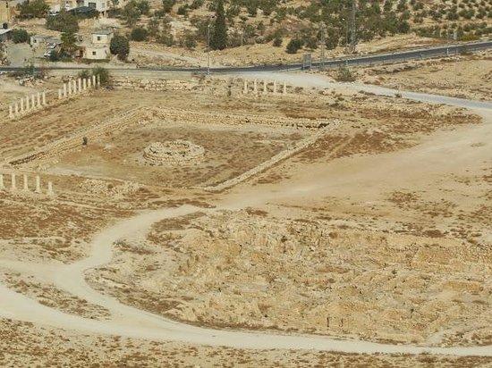 Herodium: panorama sur le desert environnant (avec une oliveraie)