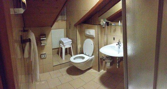 Altpradl Hotel: Bagno