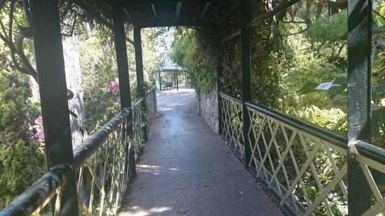 Gibraltar Botanic Gardens (The Alameda): Bridge In Botanical Gardens