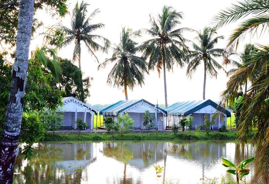 Bhitarkanika National Park, Indien: Accommodation of Sand Pebbles Bhitarkanika Jungle Resorts