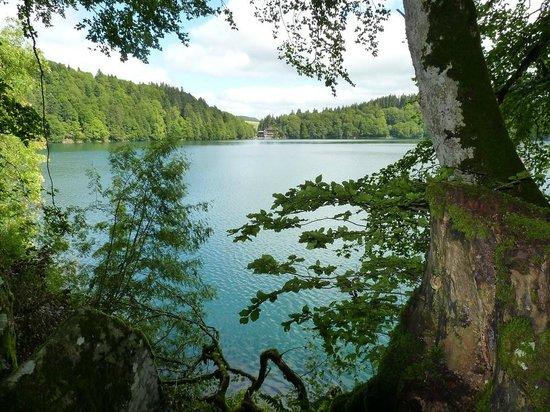 Lac Pavin : Vue d'ensemble du Lac, c'est presque bleu