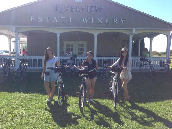 Grape Escape Wine Tours: bike wine tour at Riverview Estate Winery
