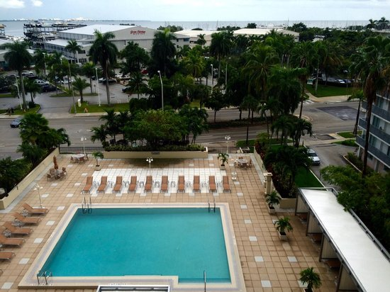 Courtyard Miami Coconut Grove: Pool view