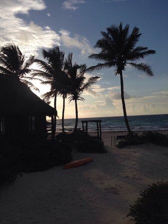 Tulum Hemingway Romantic Cabanas : View from tortuga room