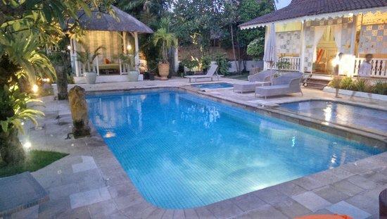 Hotel Puri Tempo Doeloe: Pool