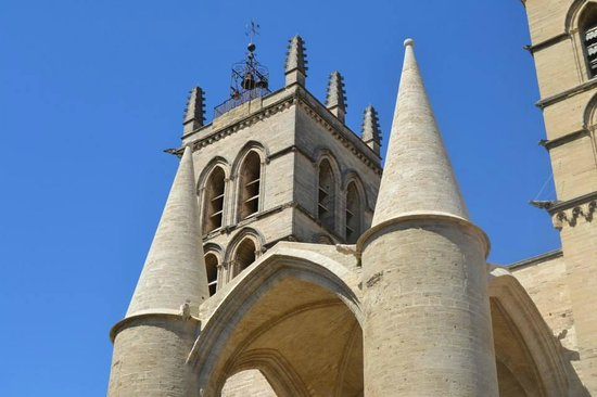 Cath drale saint pierre fotograf a de cathedrale st pierre montpellier tripadvisor - Cathedrale saint pierre de montpellier ...