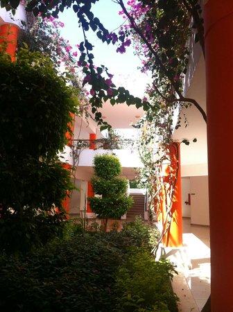 Fantazia Resort: z