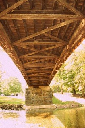 Humpback Bridge: under the bridge - rope swing