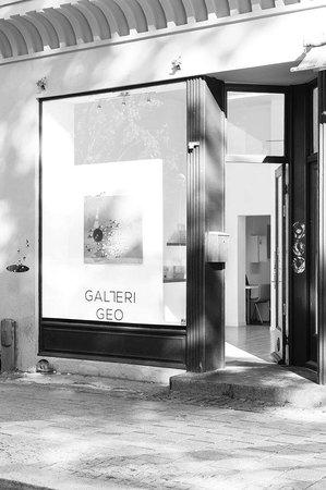 Galleri GEO