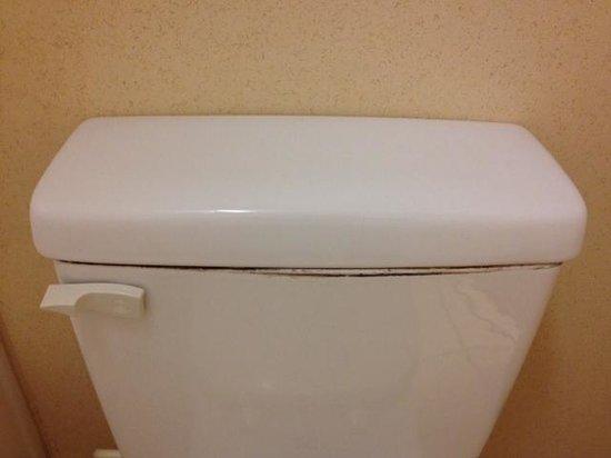 Quality Inn Newnan : toilet