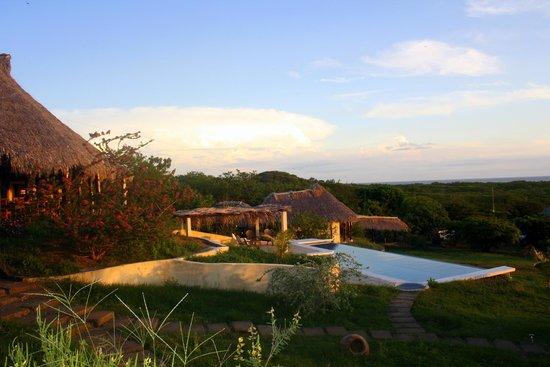 Las Plumerias Lodge and Surf: Vue de la chambre