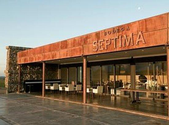 Bodega Septima: Vista del restaurante y de la terraza
