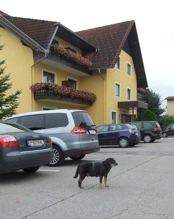 Hotel Reif - Urdlwirt: Hotelgelände