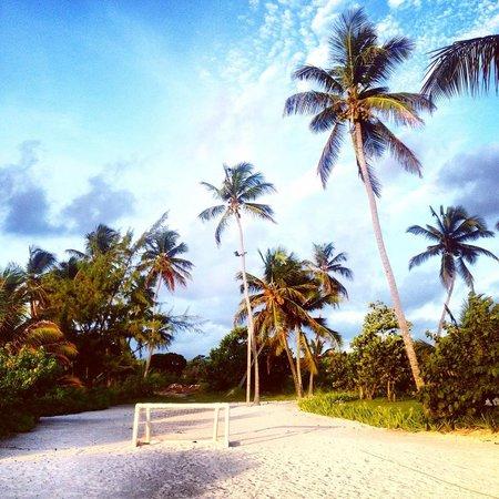 The Westin Puntacana Resort & Club: 3