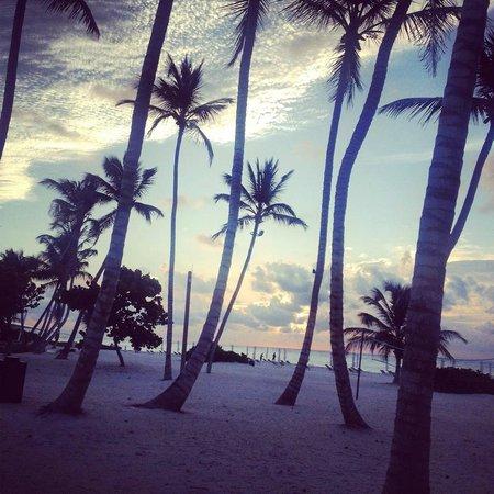 The Westin Puntacana Resort & Club: 2