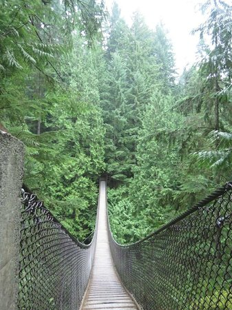 Lynn Canyon Park: Suspension Bridge