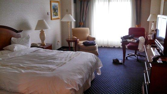 Chicago Marriott Southwest at Burr Ridge: Room 719