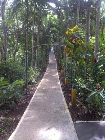 Bay View Eco Resort & Spa: Pathway