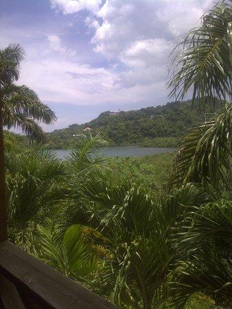 Bay View Eco Resort & Spa: View