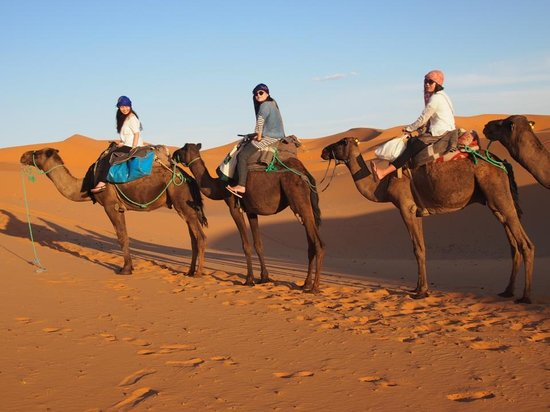 Travel Within Morocco