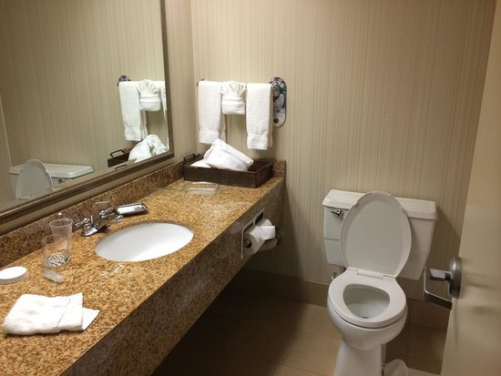 Holiday Inn Austin-Town Lake: Room 1029
