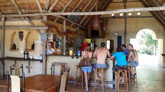 Turtle Cove: Bar