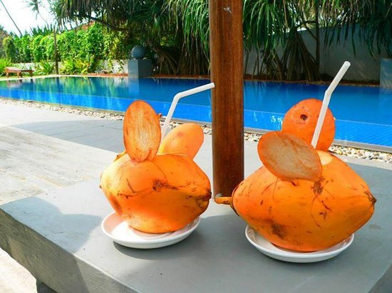 Club Villa: Complimentary king coconuts served daily
