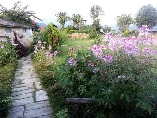 Annapurna Eco-Village: Gardens