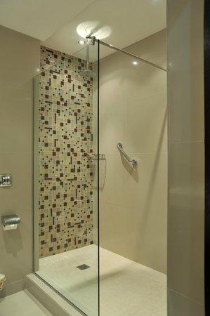 Protea Hotel Victoria Island: Standard shower