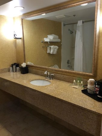 Holiday Inn BWI Airport: Vanity and tub/shower