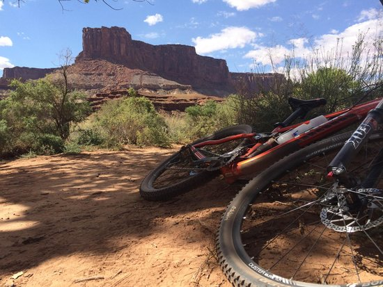 Magpie Cycling: White Rim Trail