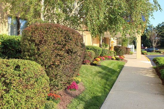 Days Hotel Egg Harbor Township-Pleasantville-Atlantic City: Days Hotel Landscaping Fall 2014