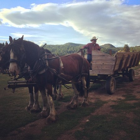 Bar W Guest Ranch : Wagon to diner