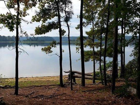 DeGray Lake Resort State Lodge : Lake