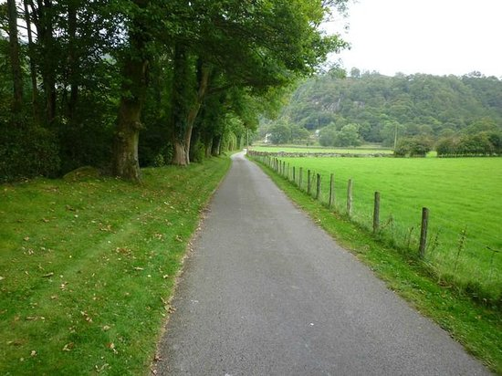 Greenbank Country House: The lane to Green Banks