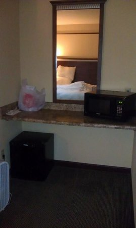 Hotel Seville : Microwave and refrigerator