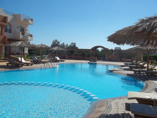 Sheikh Ali Dahab Resort: our very own pool at the room's doorstep
