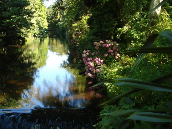 Mount Usher Gardens: Water runs through it
