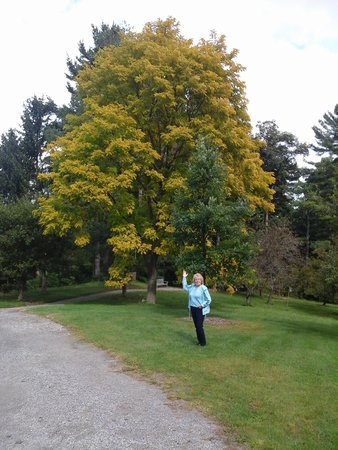 Berkshire Botanical Garden: Botanical Gardens