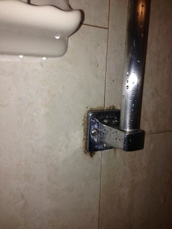 Embassy Suites by Hilton Irvine - Orange County Airport: Shower Mold